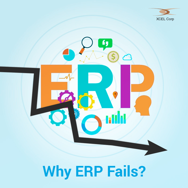 Causes for ERP system failures, Jit Goel, XCEL Corp Jit Goel