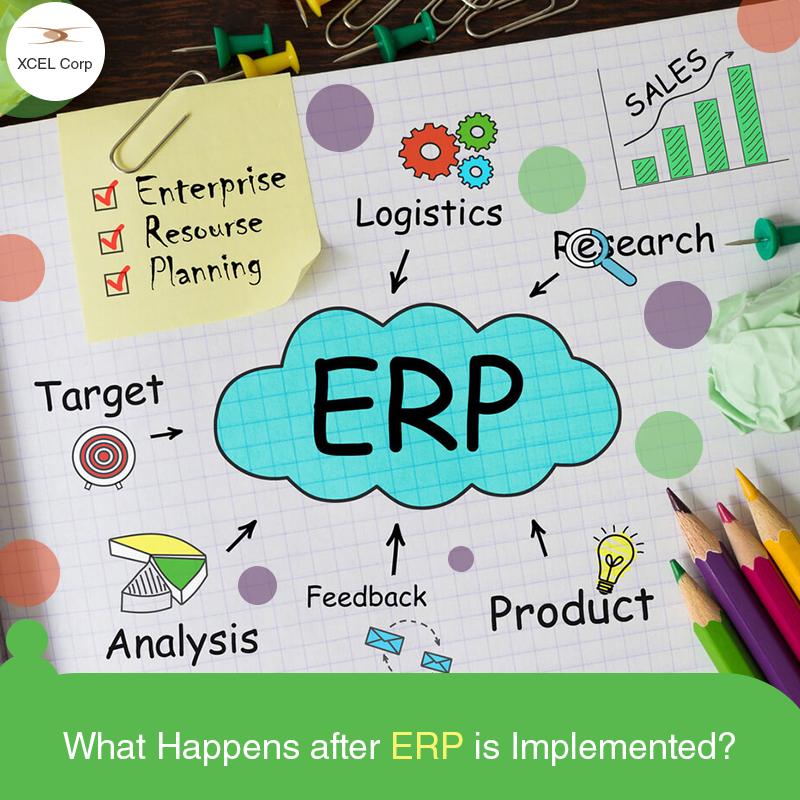 Implementation of ERP, Jit Goel, XCEL Corp Jit Goel